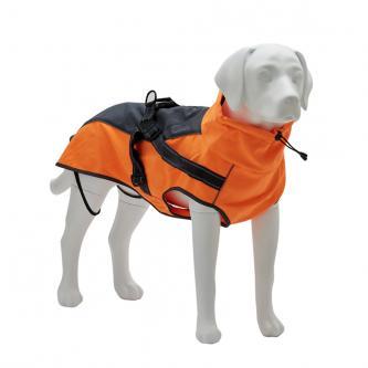Model Labrador dog displays props for pet costumes