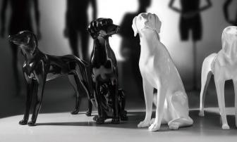 Realistically restore the attitude of the puppy 02